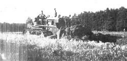 sfl-58-01-raupe